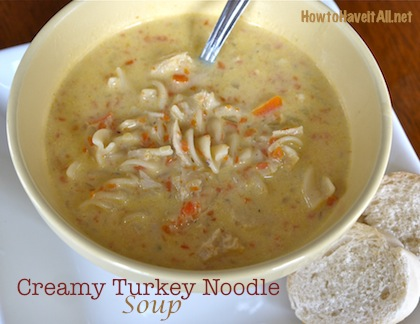 Creamy Turkey Noodle Soup Recipe How To Have It All