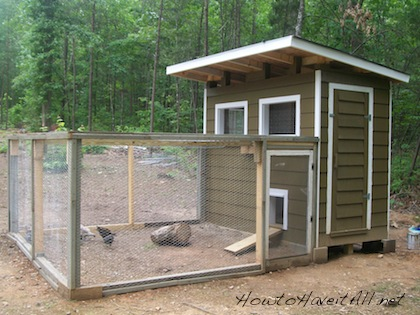 How to Build a Chicken Coop | How to Have it All