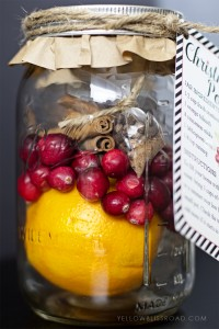 Christmas-Potpourri-with-free-printable-tag