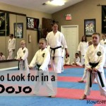 what to look for in a dojo