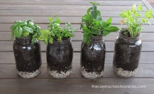 How-to-Plant-Herbs-In-Mason-Jars-46-copy_thumb